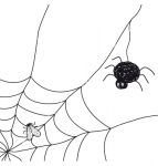 spider-with-a-fly-in-a-web-on-white-background-vector-1017295