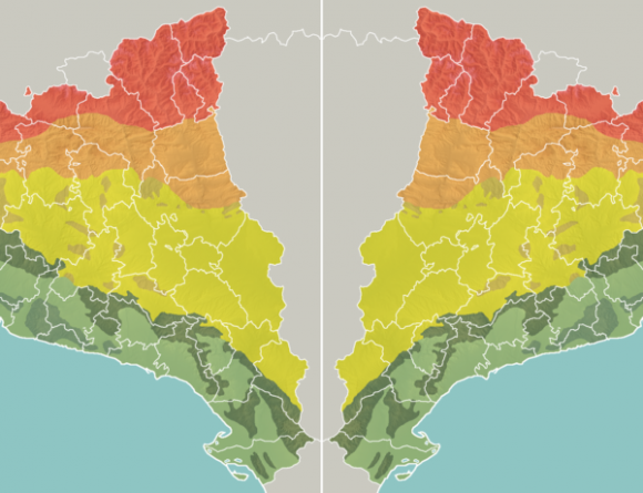 wpf-cross-image