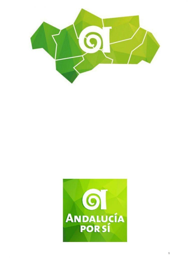 Andalucía Por Sí se presentará a las elecciones andaluzas reivindicando el 'autogobierno' andaluz.