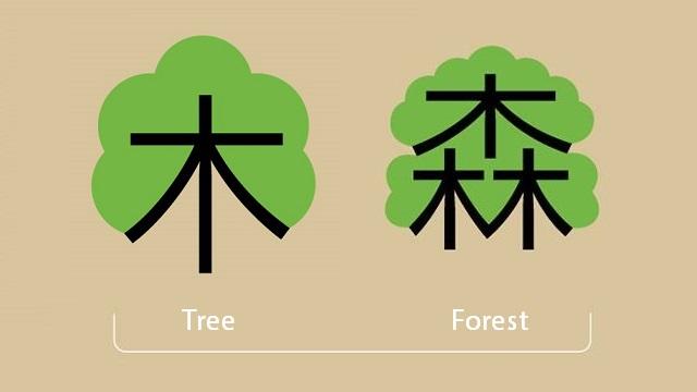 Logogramas: entendiendo los idiomas orientales