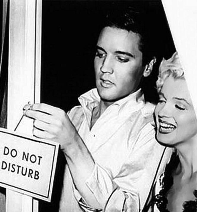 SocioPanel (8sept): los españoles no se deciden entre Elvis y Marilyn
