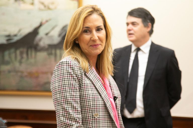 El PP considera 'una canallada' equiparar a Vox con EH Bildu