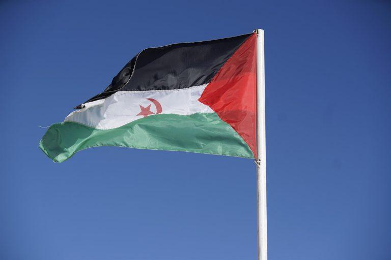 González Laya dice que el futuro del Sáhara Occidental no depende «de la voluntad de un país por muy grande que sea»