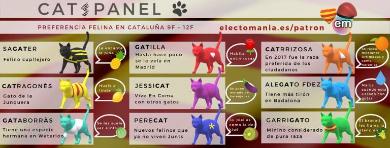 ¿Qué es nuestro CatsPanel?