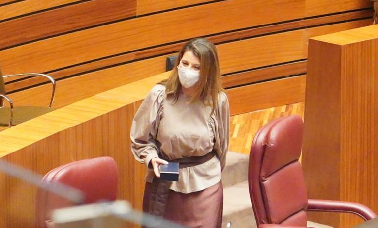 Vox no apoyará la moción de censura de CyL, pero pide a Mañueco que convoque elecciones