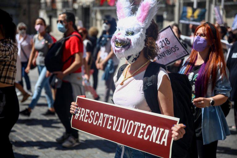 Animalistas exigen en Madrid el «rescate inmediato» de los animales de Vivotecnia