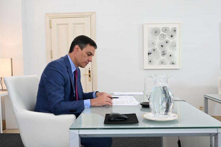 El PSOE pone en marcha el 1 de septiembre las primarias para reelegir a Sánchez como secretario general