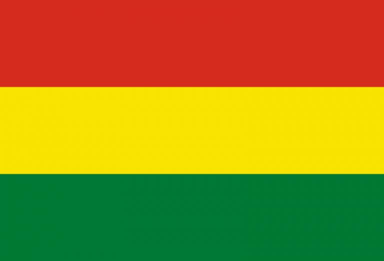 Bolivia defiende peritaje español sobre las elecciones de 2019