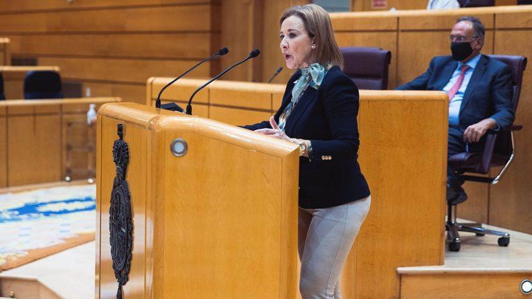 Vox se opone en el Senado a la propuesta de construir nuevos centros de acogida de inmigrantes en Murcia