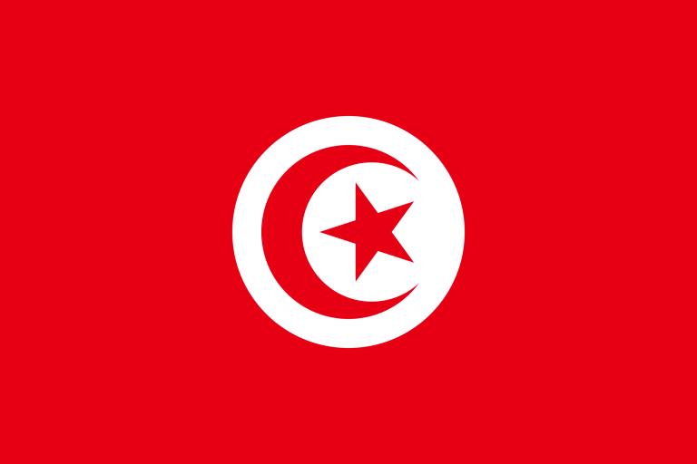 Túnez: el Presidente destituye al PM, diluye el Parlamento y se atribuye plenos poderes
