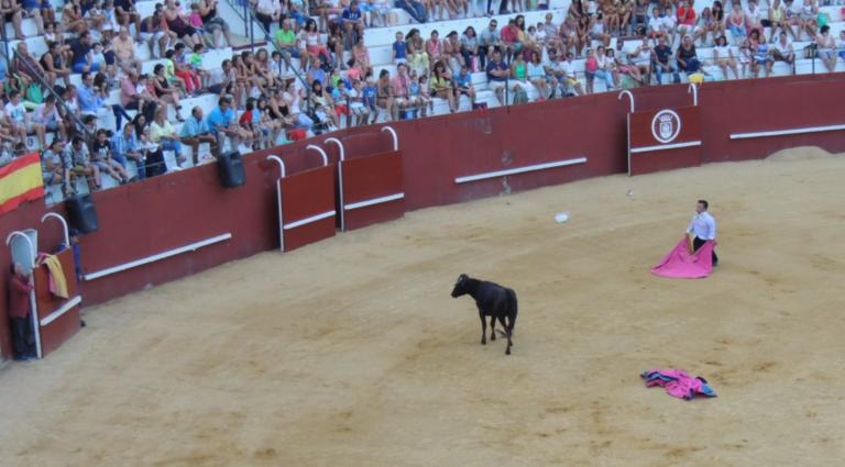 Belarra quiere prohibir determinados espectáculos taurinos