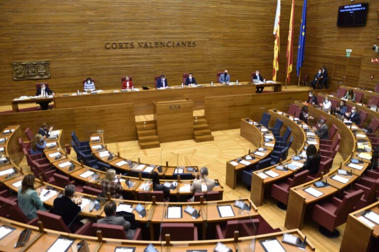 Diputada de Vox en las Cortes Valencianas deja el grupo parlamentario al no sentirse «cómoda» pero seguirá con su escaño