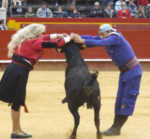 discapacidad-toros