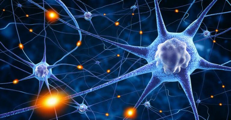 Desarrollan una neurona artificial usando iones que funciona como una natural para el almacenamiento de información