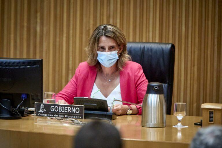 Ribera apoya crear una comisión en el Congreso para estudiar las causas de la subida de la luz