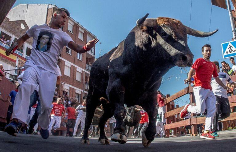 San Sebastián de los Reyes se queda sin encierros este año